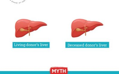 Debunking The Myth – A living donor's liver is better than deceased donor's